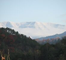 Private View - TN Great Smoky Mountains by JeffeeArt4u