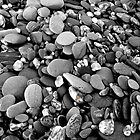 Pebbles by Mark  Brady