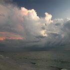 Florida Sunset by suz01