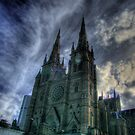 St Mary's Cathedral by pedroski