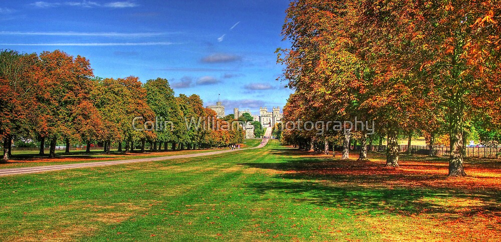 The Long Walk Windsor - HDR by Colin  Williams Photography