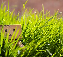 danbo the explorer by snowingindoors