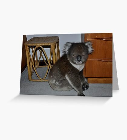 A stanger in my bedroom Greeting Card