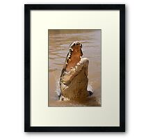 Saltwater Crocodile on the Adelaide River Framed Print