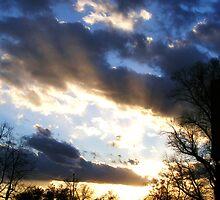 Sunset Over City Park by Thomas Stevens