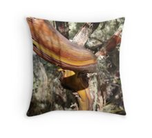 Tree bark, Mount Mulanje, Malawi Throw Pillow