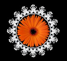LACE GERBERA FLOWER... PICTURE,PILLOW,TOTE BAG,ECT.. by ✿✿ Bonita ✿✿ ђєℓℓσ
