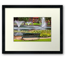 *PARK VIEW* Framed Print