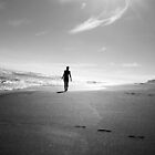 Walk on the beach by Stephanie Stengel | stelonature photography
