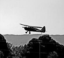 FLYING LOW AND SLOW by SMOKEYDOGSOCKS