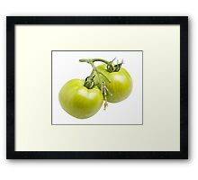 Green Tomatoes Framed Print