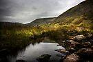 Wythburn Valley #2 by David Robinson