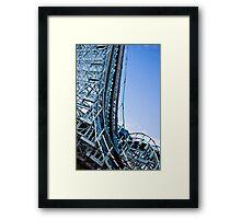 The Wildcat Framed Print