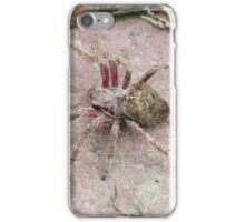 Spider iPhone Case/Skin