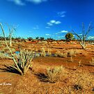 Colours of the Outback, Hyden, WA by Malcolm Katon
