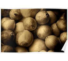 Onions aged sepia Poster