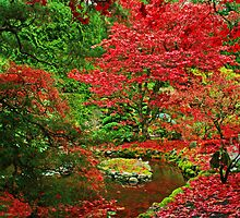 Butchart Gardens 15 by James Birkbeck