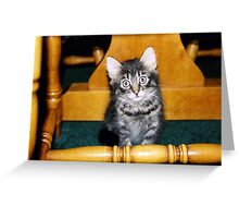 Winston 2004 by Colin Harper Greeting Card