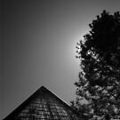 Pyramid and Pine by Robert Meyer
