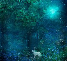 Midnight in the Secret Garden by Angie Latham