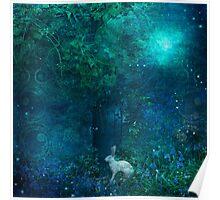Midnight in the Secret Garden Poster