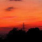 Sunset 03 29-09-09 by Sharon Perrett