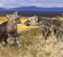 SPOTTED HYAENA 7 by DilettantO