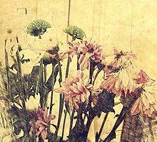 Vintage Flowers by Tahliah