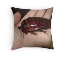 Big Cockroach Throw Pillow