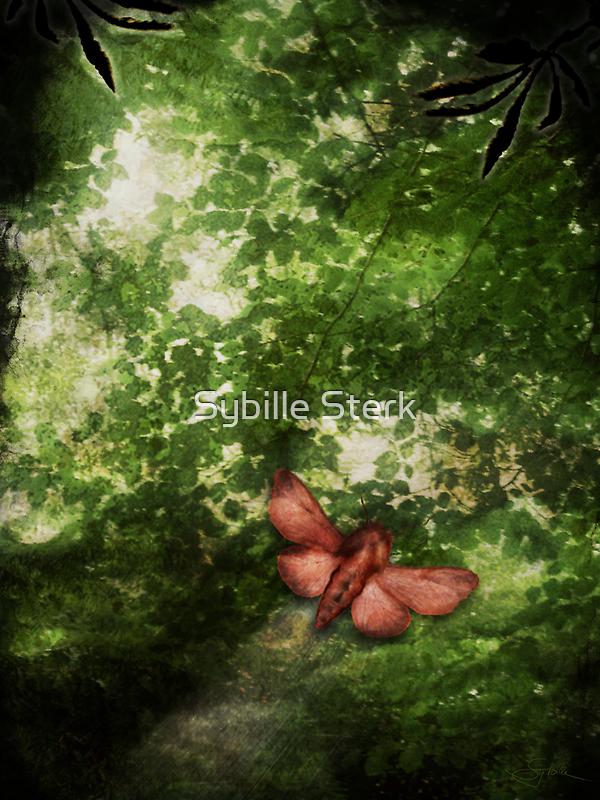 In the Deep Dark Wood by Sybille Sterk