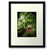 In the Deep Dark Wood Framed Print