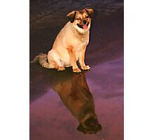 ~time to reflect~ Photographic Print