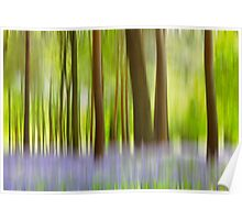 Walking through the enchanted bluebell wood Poster