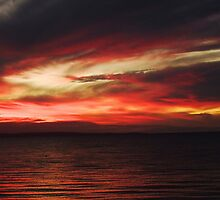 Firey Sunset by Julia Harwood