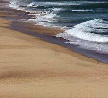 Windswept Shoreline by reflector
