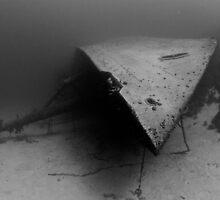Shipwreck's Bow by Rick Grundy