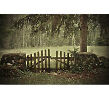 The enchanted gate  Photographic Print