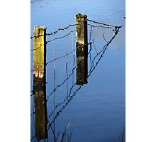 fence in Photographic Print