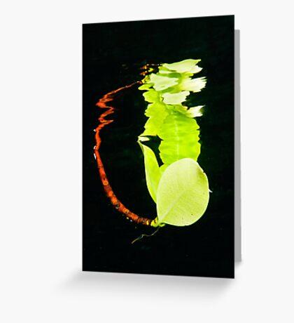 Leaf Reflection Greeting Card