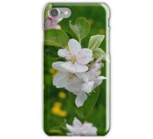 Wellwood's Spring Apple Blossoms - 6 iPhone Case/Skin