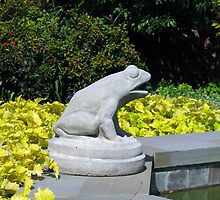Hiya, Froggie! by Betty Mackey