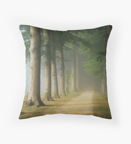 Where will I go from here ... ? Throw Pillow