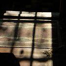 Sun Shadow by Jeff Stroud