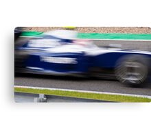 Williams Canvas Print