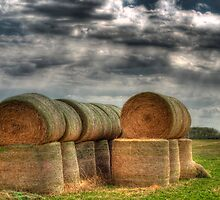 Autumn Bails by Myron Watamaniuk