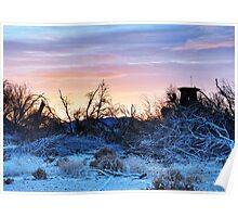 Morning on the Mojave Poster