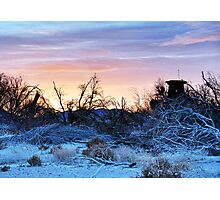 Morning on the Mojave Photographic Print