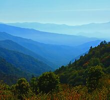 OCONALUFTEE VALLEY by Chuck Wickham