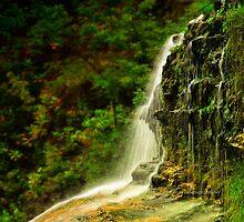 Ithaca's Treman Falls V by PJS15204