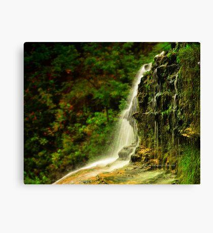 Ithaca's Treman Falls V Canvas Print